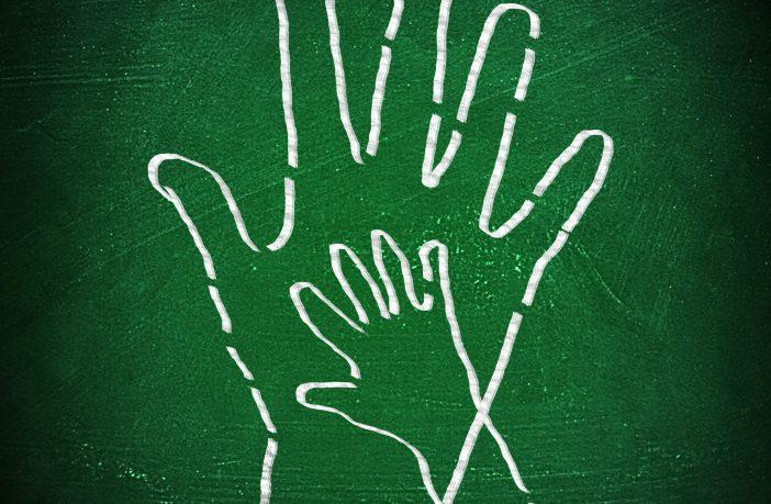 El 7,8% del alumnado recibe apoyo educativo.