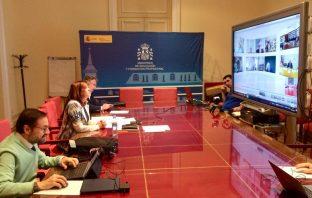 La directora general de FP, Clara Sanz (izquierda), durante la reunión telemática con los directores de FP de las CCAA.