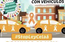 El domingo 22 de noviembre decenas de miles de personas participaron en las manifestaciones con vehículos que se celebraron en más de 30 ciudades españolas contra la Ley Celaá.